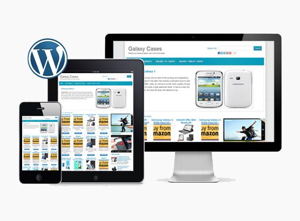 AZonPress - Amazon Store Theme For Wordpress